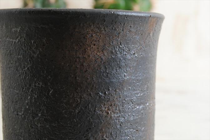 信楽焼 寸胴鉢 3号 陶器鉢 植木鉢 おしゃれ サボテン 塊根植物 コーデックスに